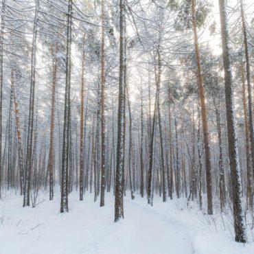 Rester en forme tout l'hiver