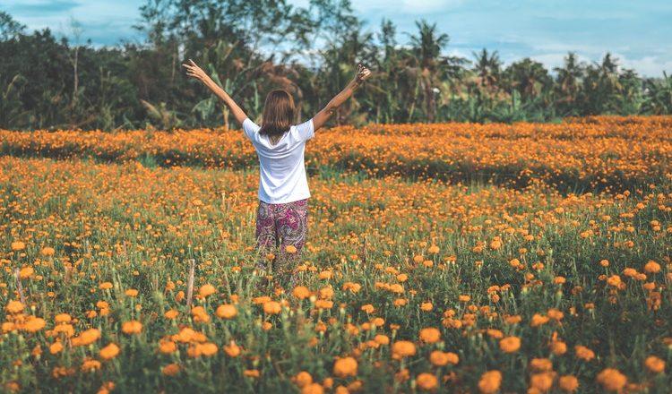 En finir avec les allergies saisonnières